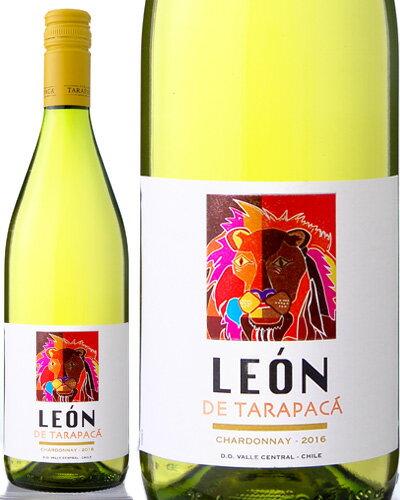 レオン・デ・タラパカ・シャルドネ[2016](白ワイン)