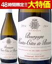 【7月27日より出荷】オート・コート・ド・ボーヌ・ブラン[2014]エマニュエル・ルジェ(白ワイン)[Y][P][A][S] ランキングお取り寄せ