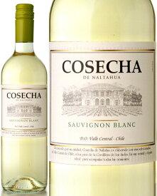 コセチャ [2018] ソーヴィニヨン・ブラン (旧 コセチャ タラパカ ソーヴィニヨン・ブラン) ( 白ワイン )