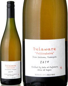 デラウェア ペリキュレール バイ サトウ [ 2019 ]清澄白河フジマル醸造所 ( オレンジワイン )