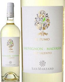 イル プーモ ソーヴィニヨン マルヴァージア [2019] サン マルツァーノ ( 白ワイン )