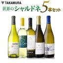 ワインセット 白 送料無料 第1弾 世界の人気品種 シャルドネ を味わいつくす 5本 白ワイン セット(白5本)(追加7本…