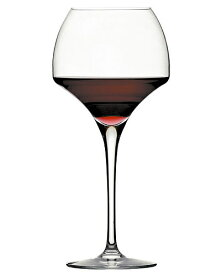 オープンナップ シリーズ タニック シェフ&ソムリエ(ワイングラス) (ワイン(=750ml)11本と同梱可)