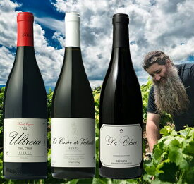 送料無料●3●スペインの天才醸造家『ラウル・ペレス』が造るメンシア赤ワイン3本セット(スペインワイン/赤ワイン/ワインセット)
