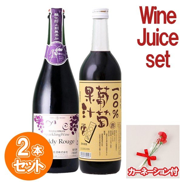 母の日 カーネーション付き ジュース・ワイン2本セット 蒼龍葡萄酒 コンコード 日本 山梨 ぶどうジュース・甘口赤スパークリングワインギフト 750ml