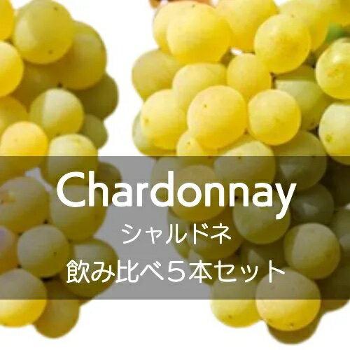 シャルドネ飲み比べ5本セット【ワインセット】
