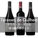 ムーラン・ド・ガサック テラス・ド・ギレム赤3種6本セット【ワインセット】