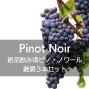 絶品飲み頃ピノ・ノワール厳選3本セット【ワインセット】