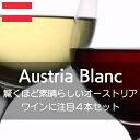 驚くほど素晴らしいオーストリアワインを堪能する白3本、赤1本の4本セット!【ワインセット】