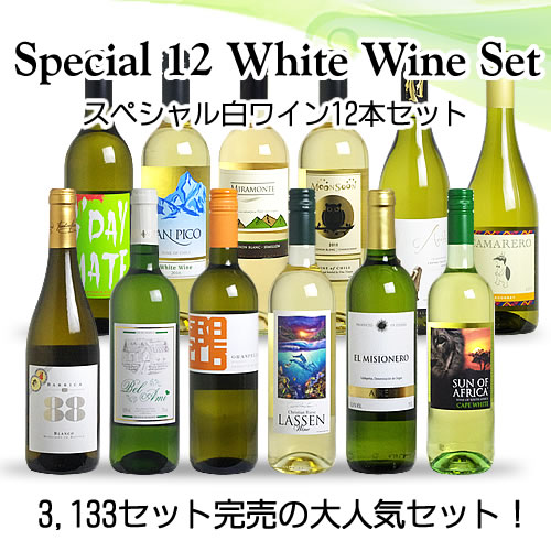 【送料無料】 <第43弾> スペシャル白ワイン12本セット(白12本) ※同梱不可【あす楽対応_関東】