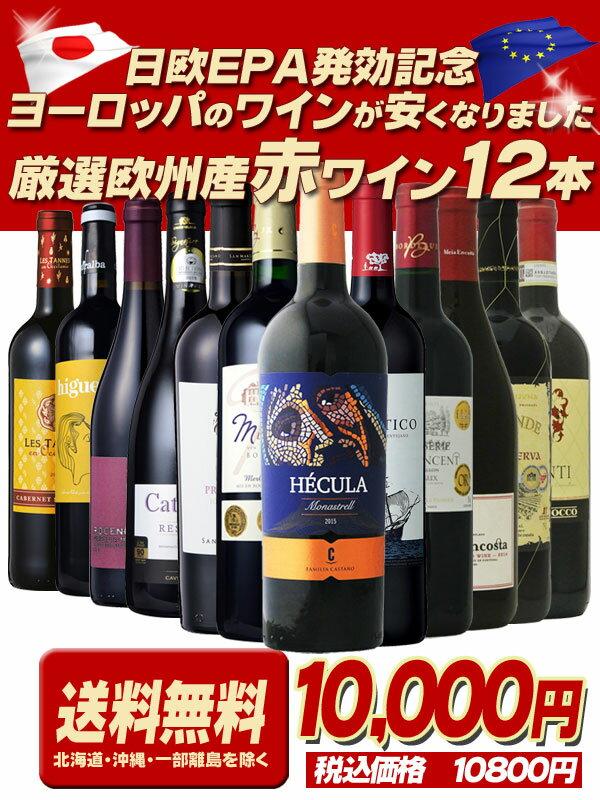 【送料無料】1本あたり665円!厳選赤ワイン12本セット