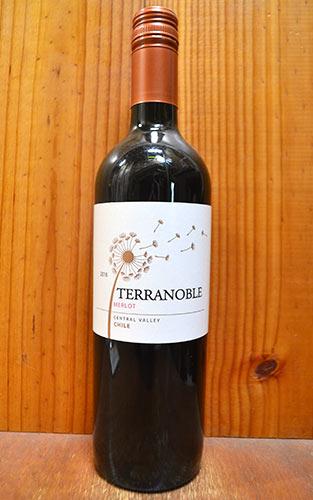 【666均】テラノブレ・メルローVALLE ANDINO MERLOTヒュージョンソン氏も注目!プラムの香り?完熟メルローからお買い得ワイン!
