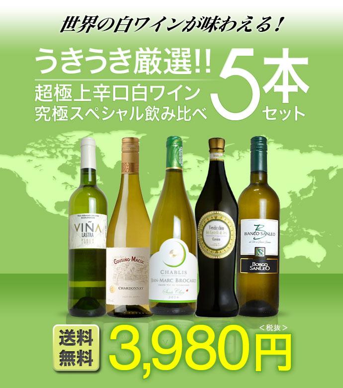 【同梱不可】【送料無料】白ワイン セット ソムリエが選ぶ 世界の白ワイン 超極上 辛口 白ワイン 飲み比べ 5本セット