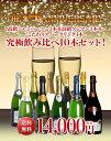 【送料無料】特別企画 14周年記念大感謝 高級シャンパーニュ3本&高級クレマン3本&こだわりスパークリング4本 究極飲…