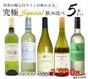 【54弾】【送料無料】うきうき厳選 世界の白ワインが味わえる超極上辛口白ワイン究極スペシャル飲み比べ5本セット【ワ…
