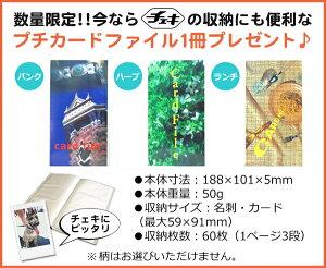富士フィルムインスタントカメラinstaxmini8+チェキ本体+フィルム50枚セット