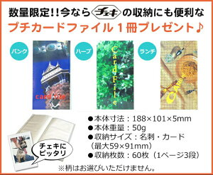 チェキ本体instaxmini70N&チェキ用フィルム100枚&おまけアルバム2冊お得セット富士フイルム