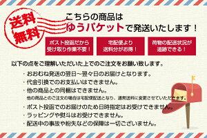 【ゆうパケット便送料無料】23種類から自由に選べる!チェキフィルム40枚セット富士フイルム