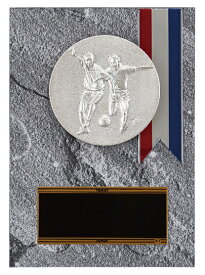 【文字彫刻無料】楯(PL6299D)高さ:14cm/サッカー