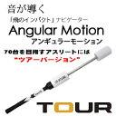 アンギュラーモーション ツアーWH 左右兼用 (G-279) Angular Motion Tour 横田英治プロ監修 素振りギア