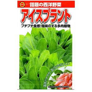 アタリヤ農園 野菜種 アイスプラント AM