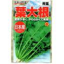 アタリヤ農園 野菜種 日本産 葉大根 B11-021 AM
