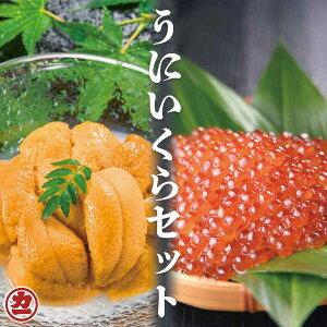 エゾバフンウニ・ますいくら醤油漬けセット (うに100g・いくら200g) 全国送料無料 冷凍