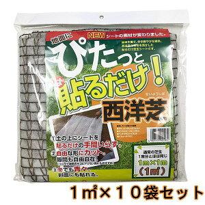自然応用科学 西洋芝の種 ぴたっと貼るだけ西洋芝 1平方メートル ×10袋 送料無料