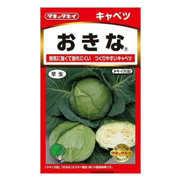 タキイ種苗 野菜種 キャベツ おきな B01-051 AM
