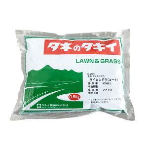 タキイ種苗 緑肥 グランドカバー ダイカンドラ コート 0.5kg AM2