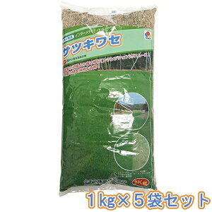 タキイ種苗 芝種 インターメディエイトライグラス サツキワセ 1kg ×5袋 送料無料