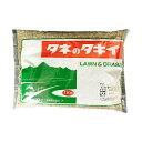 タキイ種苗 芝種 トールフェスク スパイダーLS 1kg A