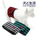 ◯送料無料 犬と生活マナーベルト ボーダー M(小型犬用)肌側にはオーガニックコットンを使いました。【犬用マナーベルト マナーバンド マーキング マーキング防止...