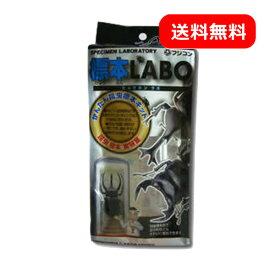 フジコン 標本LABO カブトムシ クワガタ 昆虫用 標本セット