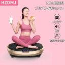 【3年保証】HZDMJ ダイエット 3d Bluetooth コンパクト 静音 筋トレ シェイカー 振動マシン 振動マシーン エクササイ…