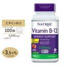 ビタミンB-12[すぐ溶けるチュワブル]5000mcg 100粒(ストロベリー味)サ プリメント サプリ ビタミンB12 送料無料【ポ…