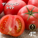 ワンダーファーム サンシャイントマト A品 4kg お取り寄せ野菜 ギフト トマト