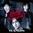 【オリジナル特典付】WANDS/BURN THE SECRET<CD+DVD>(初回限定盤)[Z-9919]20201028