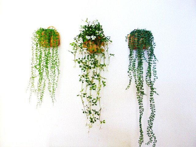 選べる壁掛けグリーン♪おうちの壁からおしゃれを楽しむ 観葉植物造花 <送料無料> 触媒加工【造花】【フェイクグリーン】【インテリアグリーン】【壁掛グリーン】【2990円】【2000円代〜】