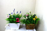 【ミックスプランター】【観葉植物】【造花】【2柄よりお選び下さい】【触媒加工】