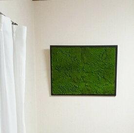 造花グリーン パネル 送料無料 人工観葉植物 グリーン 壁掛け Mサイズ 壁面 飾り インテリア グリーン 壁掛け ナチュラル グリーン フェイク 店舗装飾 壁 緑 壁掛け おしゃれ 楽天 インテリアグリーン 通販 ディスプレイ 横幅60cm モス 壁掛け 苔 触媒加工 消臭