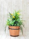 人工観葉植物造花
