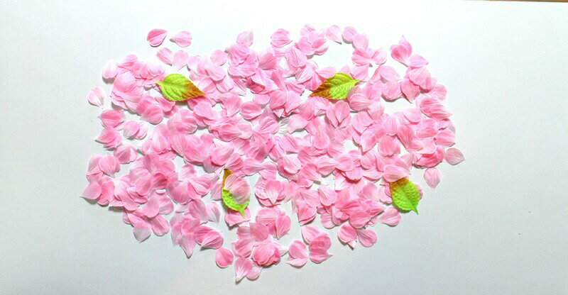 【サクラペタル】【600枚入】【2色よりお選び下さい】【フラワー】【フラワーペタル】花吹雪【桜】【ディスプレイ】【たっぷり】【造花】【シルクフラワー】【1280円】【結婚式】【春】【装飾】【きれい】【桜の花びら】