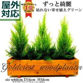 ゴールドクレストウッドプランター/60cm/楽天ランキング1位受賞 屋外対応 フェイクグリーン ウッドプランター 国産杉 人工観葉植物 造花 触媒加工済 お手入れ不要 屋外