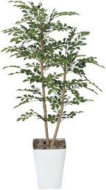 期間限定ポイント10倍/人工観葉植物/光触媒トネリコ1.2