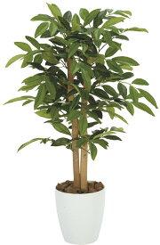 期間限定ポイント10倍/人工観葉植物/光触媒アンデルシア(万両)90