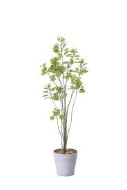 【人工観葉植物】【ブランチツリ—1.7】【1.7m】【光触媒加工】【送料無料】【フェイクグリーン】【代引き不可】