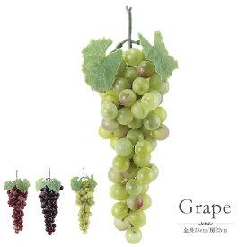 ブドウ グレープ フルーツ 食品サンプル