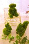 【モスアニマル】【クマ・ウサギ・リス3点セット】【フェイクグリーン】【モスグリーン】【送料無料】