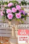 高さしっかり◎送料無料流行のスリットプランターローズディスプレイお花枯れない装飾店舗インテリアガーデニング12,800円高品質ローズ店舗装飾お庭エレガント玄関スリットプランター薔薇プランター